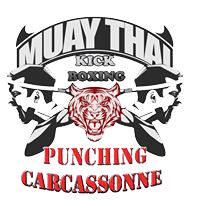 PUNCHING BOXE CARCASSONNE